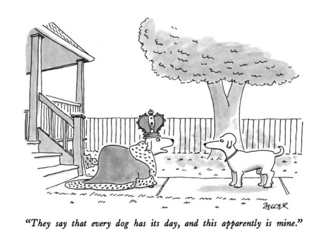 jack-ziegler-they-say-that-every-dog-has-its-day-and-this-apparently-is-mine-new-yorker-cartoon